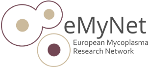 Logo eMyNet