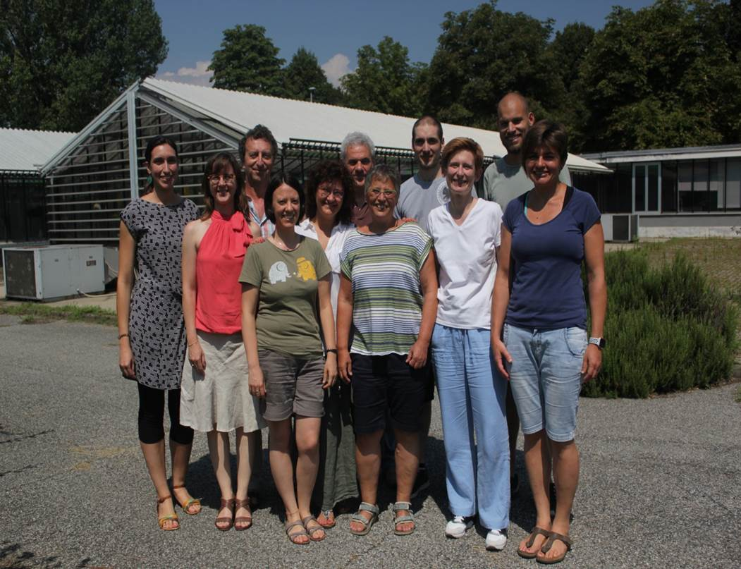 The Torino Phytoplasma – Host Interaction Group